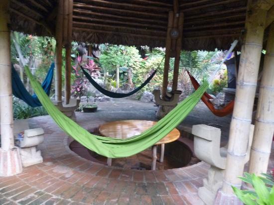 貝爾莎衝浪營飯店照片