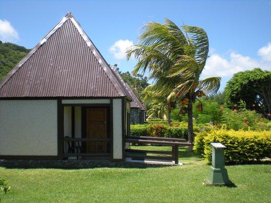 Coralview Island Resort: A bure