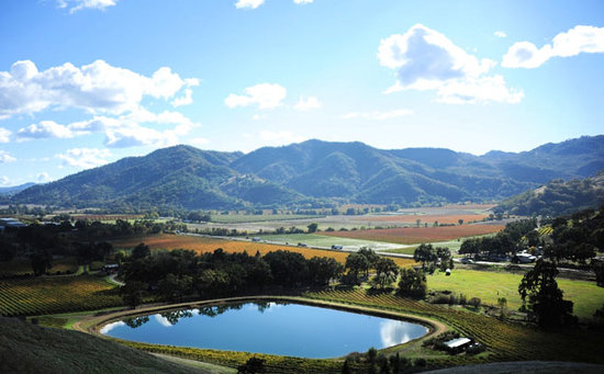 Nelson Family Vineyards: View of our ranch