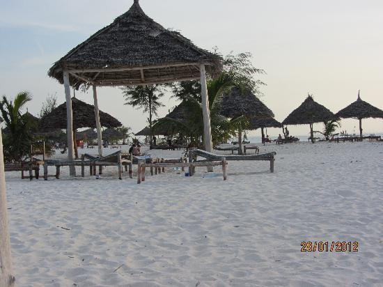 White Sands Beach Hotel: bungalow