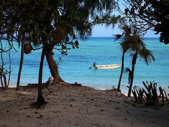 Pelican Beach Hotel : view from our door