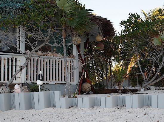 Pelican Beach Hotel : Barracuda Beach Bar at the Pelican Beach
