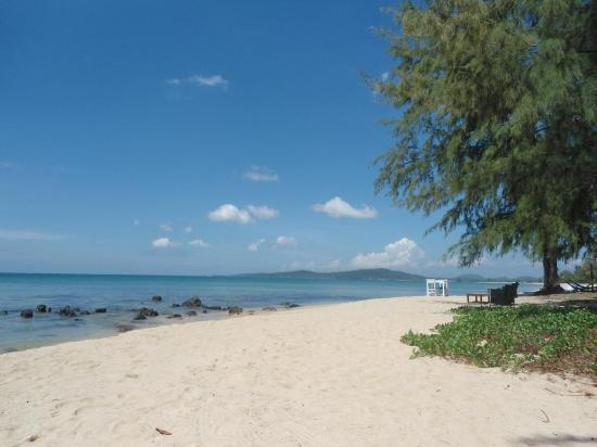 Freedomland Phu Quoc Resort: Nearby - Bo Resort's beach
