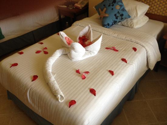 Resta Club Resort : Room