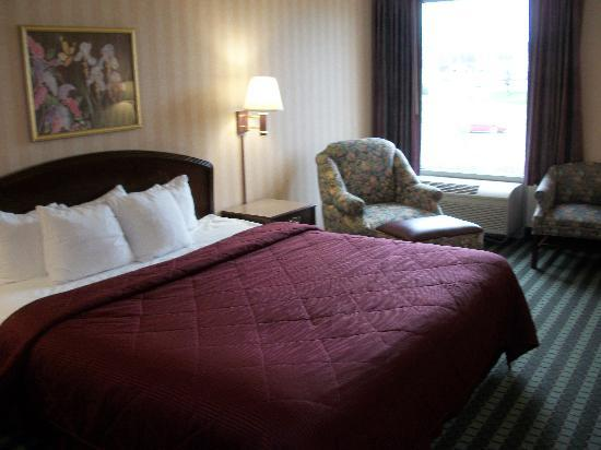 Comfort Inn Roanoke Airport: King size bed - very comfortable