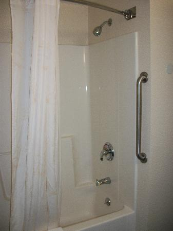 Comfort Inn Roanoke Airport: Shower - again very clean