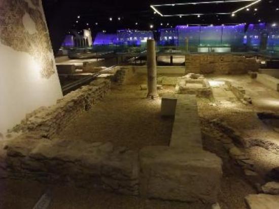 Roman Antiquarium