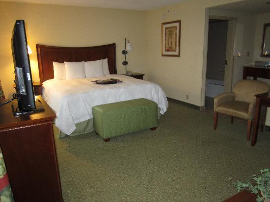 Hampton Inn & Suites Fort Myers - Colonial Blvd: Vanity area