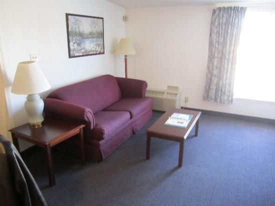 Quality Inn & Suites Albany Airport: Couch/Main Area in king suite