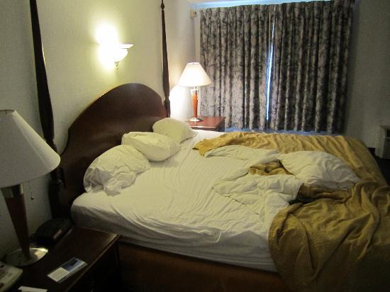 Quality Inn & Suites Albany Airport: king bed