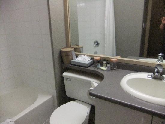Sandman Hotel Grande Prairie: Good sized bathroom