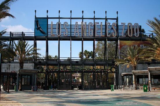 La Zoo Picture Of Los Angeles Zoo Botanical Gardens Los Angeles Tripadvisor