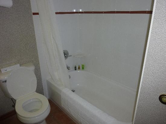 Hearthstone Lodge: Bathroom #2