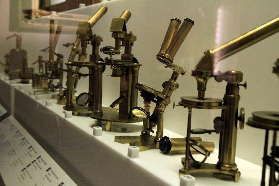 microscope development - Picture of Museo Galileo - Institute and ...