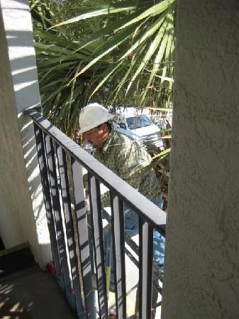 Palms at Seagrove : 6:30am workman using ear-piercing nailgun right outside our door at the Palms A-11