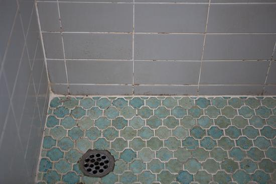 Panorama Tower: Shower Floor & Wall
