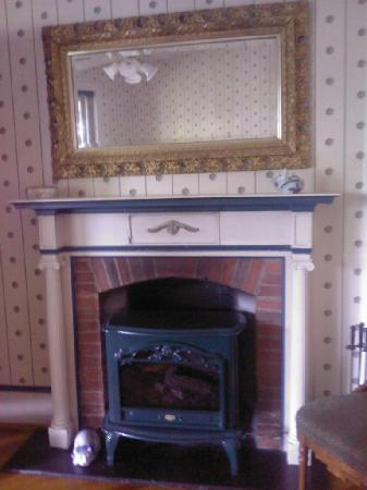 One of the Fireplaces in Killahevlin