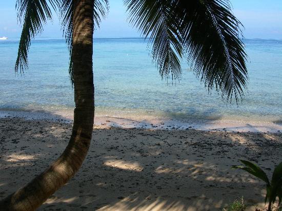 Tioman House Bungalows: la plage