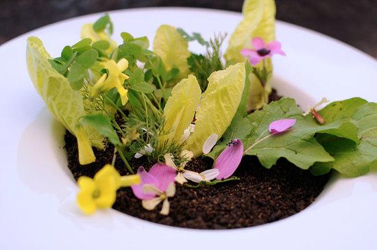 Barbun Restaurant : Malt Soil, Greens, Herbs, Flowers, Goat Cheese Creme