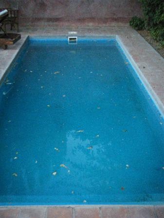 Posada Borravino: un-swimmable pool