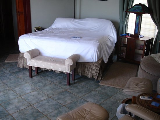 Las Palmas B&B : king bed