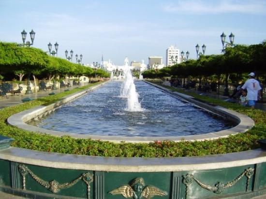 Plaza del Rosario de Nuestra Señora de Chiquinquirá: fuentes