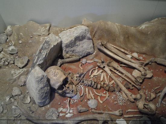 Musée de Préhistoire: museum