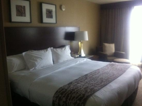 DoubleTree Club by Hilton Hotel Boston Bayside: King size bed pour une réservation single!
