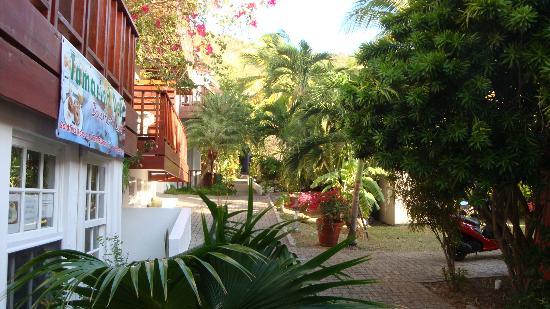 Tamarind Hotel: wat een tuin !!
