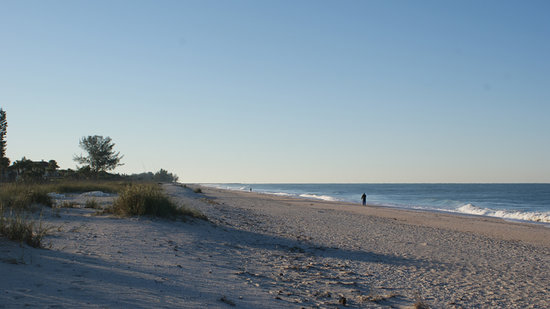 Nokomis, Floride : Beach right outside of Gulf Sands Beach Resort