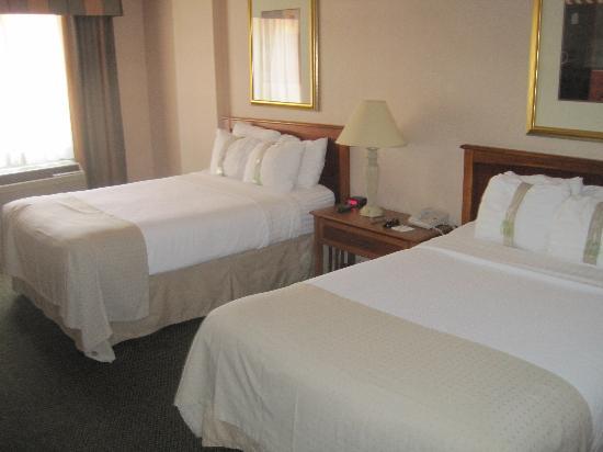 Holiday Inn Anaheim-Resort Area: Room view