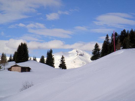 Sunstar Alpine Hotel Lenzerheide: Wanderung zum Churer Joch