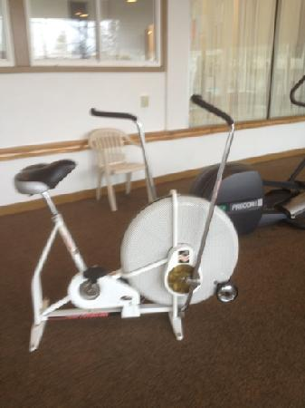 Lancaster Host Resort and Conference Center: exercise bike