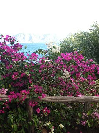 La Laguna de Apoyo, Никарагуа: Apoyo La Posada la Abuela