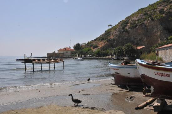 Soke, Turquía: Karina in Doganbey