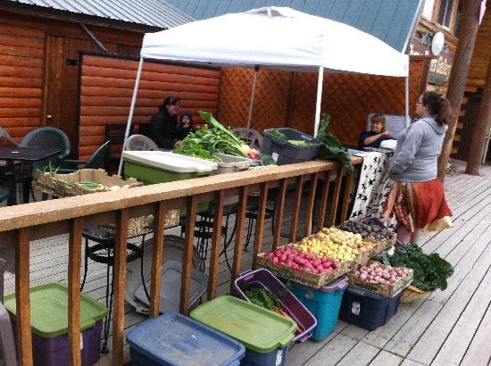 The Black Bear: local, organic farmers market