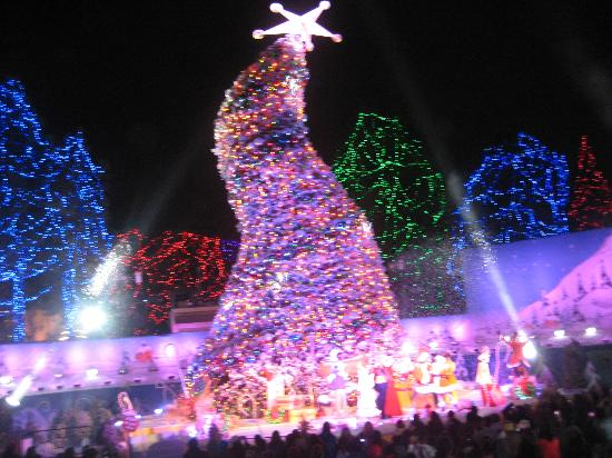 Christmas tree - Picture of Universal Studios Hollywood, Los ...