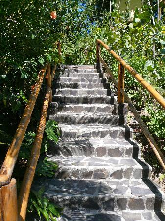 Casa Chameleon Hotel: Steps down to Villa Vista