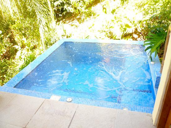 Casa Chameleon Hotel Mal Pais: Villa Vista:  the beloved polunge pool
