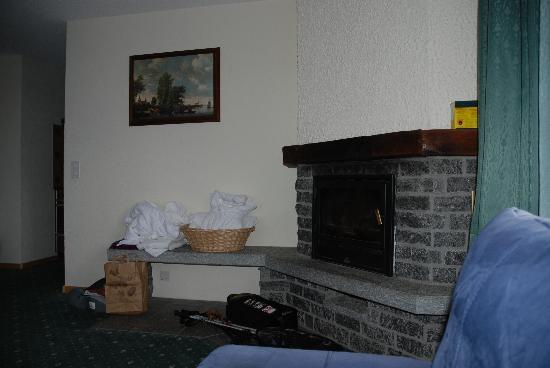 Grichting & Badnerhof Swiss Q Hotel: Coin cheminée sympa