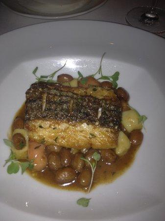 Restaurant Eve : Rockifish Entree