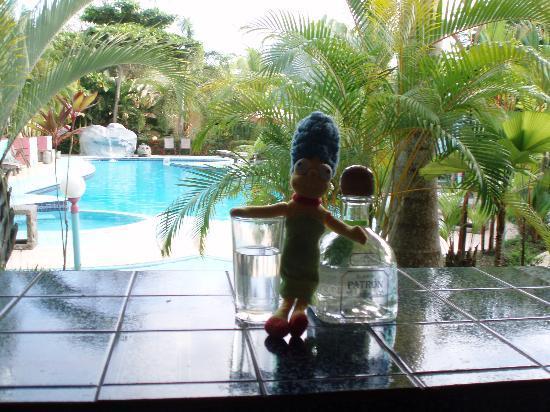 Hotel La Palmera: that's the swiming pool