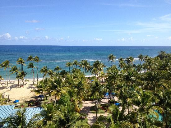Dorado, Puerto Rico: View from our room looking toward ocean