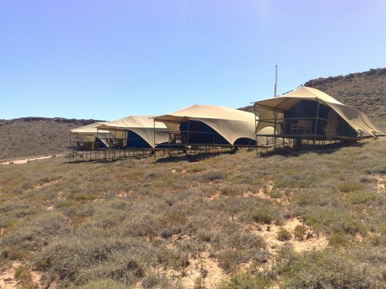Carnarvon, Australia: View of the Seascape Bungalows