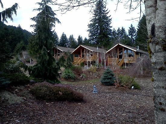 show user reviews carson ridge luxury cabins washington