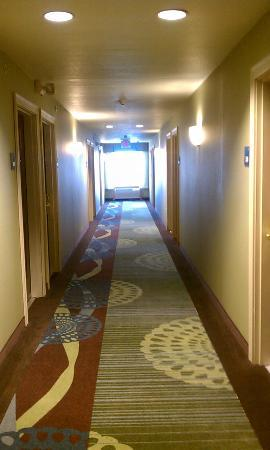 Holiday Inn Express & Suites Columbus East : Hallway