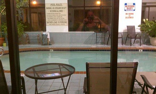 Holiday Inn Express Fenton: Indoor Pool