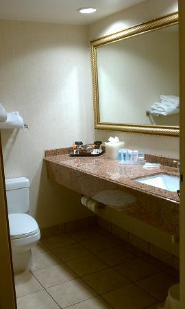 Wyndham Garden Harrisburg/Hershey: Bathroom