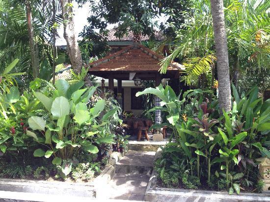 Pelasa Hotel : 庭