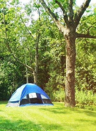 Staunton / Walnut Hills KOA: Primitive Tent Camping